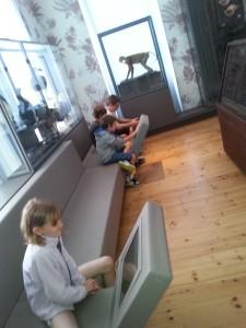 Jour 2 visite musée + la rochelle (15)