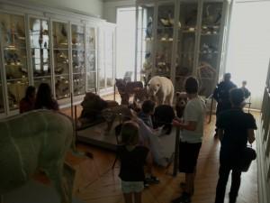 Jour 2 visite musée + la rochelle (7)